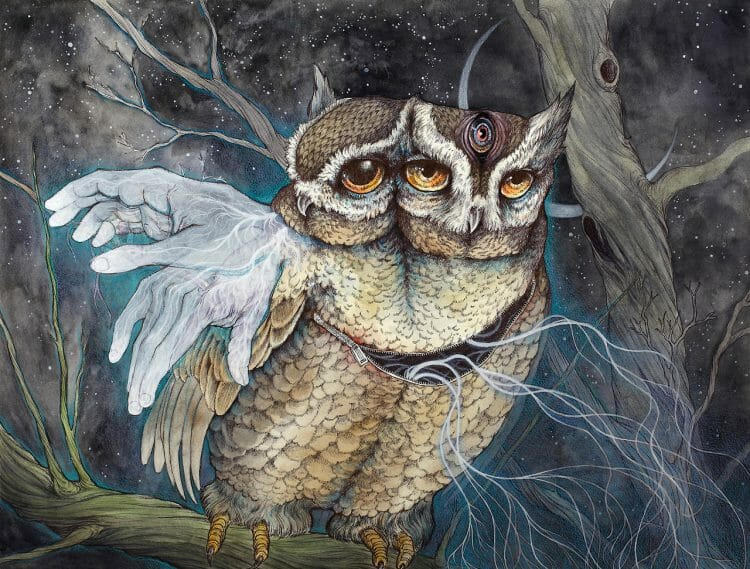 Caitlin_Hackett_Owls_Beautiful_Bizarre