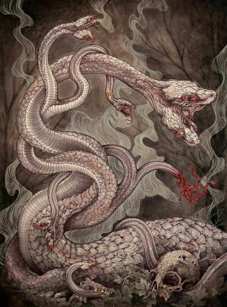 Caitlin_Hackett_Snakes_Beautiful_Bizarre