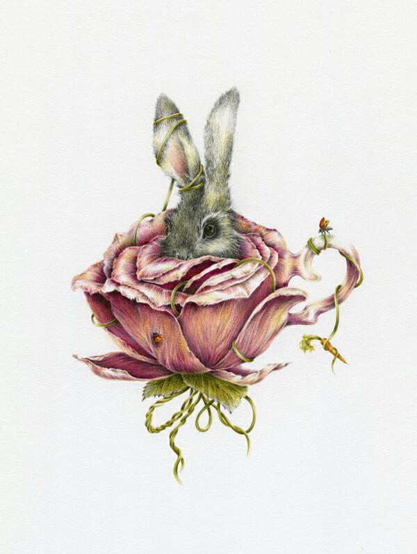 Courtney Brims Rabbit Rose Illustration