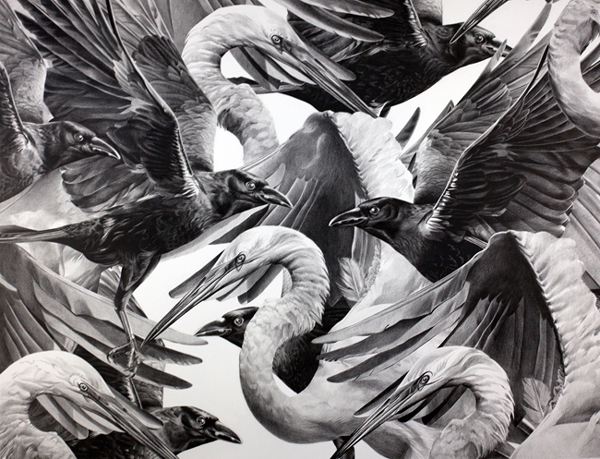 Christina Empedocles Crows and Cranes Drawing