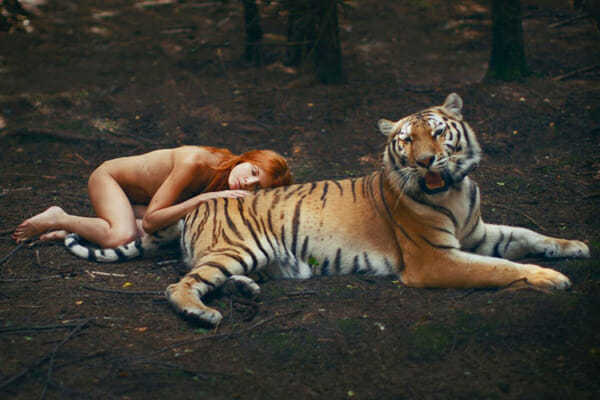 Katerina Plotnikova Photography Tiger