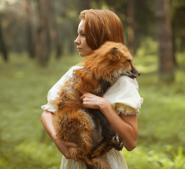 Katerina Plotnikova Photography Fox
