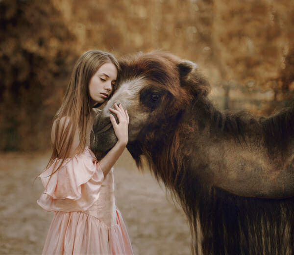 Katerina Plotnikova Photography Camel