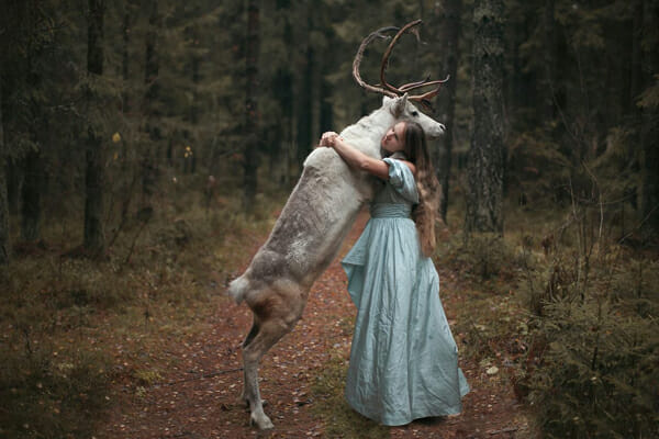 Katerina Plotnikova Photography Reindeer2
