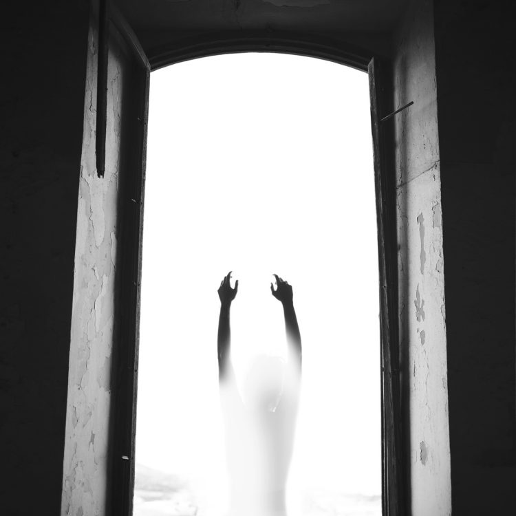 Silvia_Grav_beautifulbizarre (9)