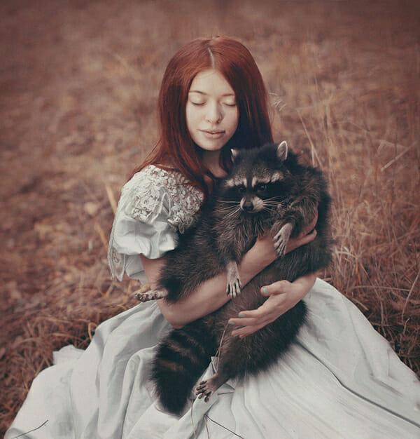 Katerina Plotnikova Photography Racoon