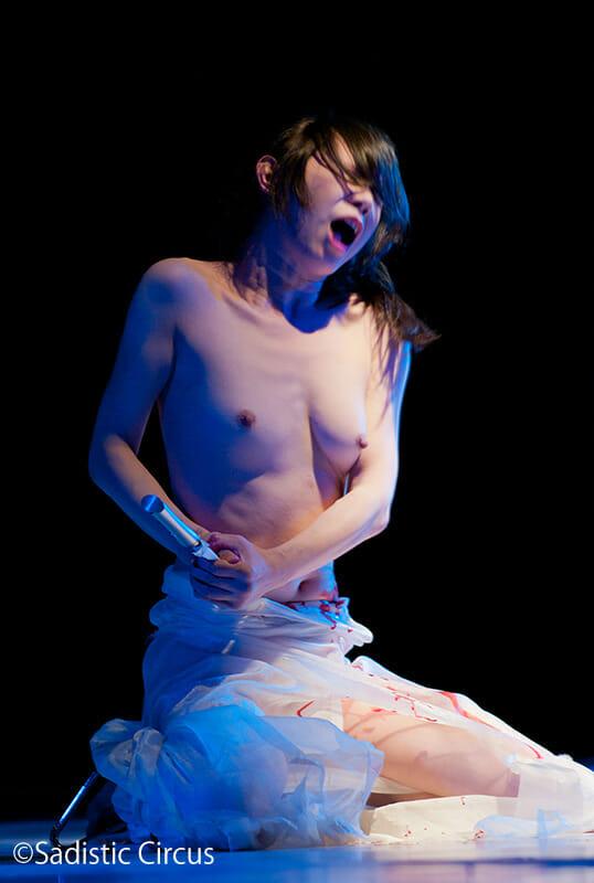 Vanilla Gallery Japan - Sadistic Circus