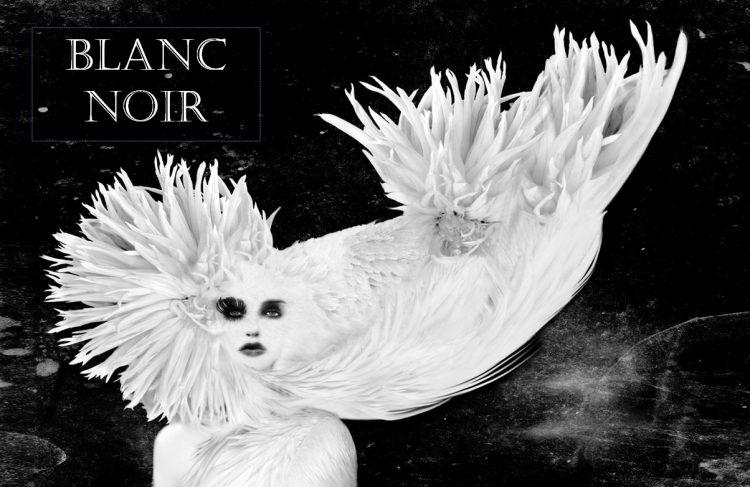 sneak peek - BLANC NOIR