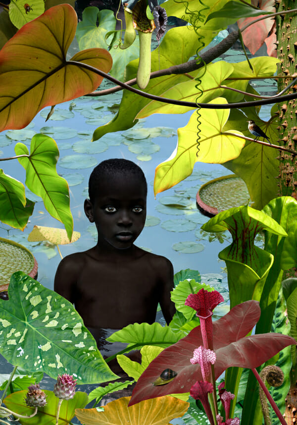 Ruud Van Empel Digital Art Photography 001