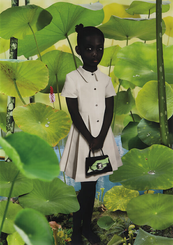 Ruud Van Empel Digital Art Photography 003