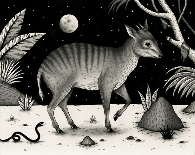 """Zebraduiker"" by Jon MacNair - On view at Antler Gallery as a part of ""Brink"" - an art exhibition for the benefit of The Audubon Society of Portland"