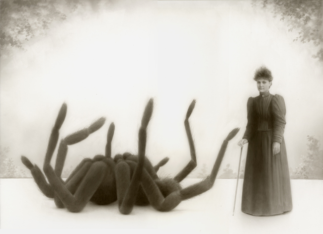 """Travis Louie """" Miss Emily Fowler and Her Spider"""" art exhibition @ Roq La Rue, Seattle"""