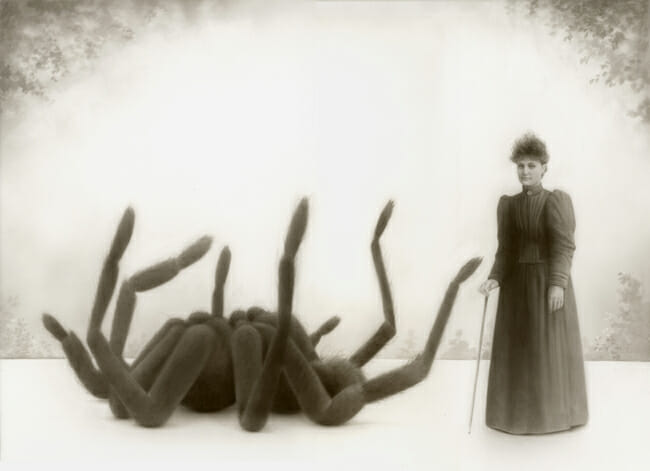 "Travis Louie "" Miss Emily Fowler and Her Spider"" art exhibition @ Roq La Rue, Seattle"
