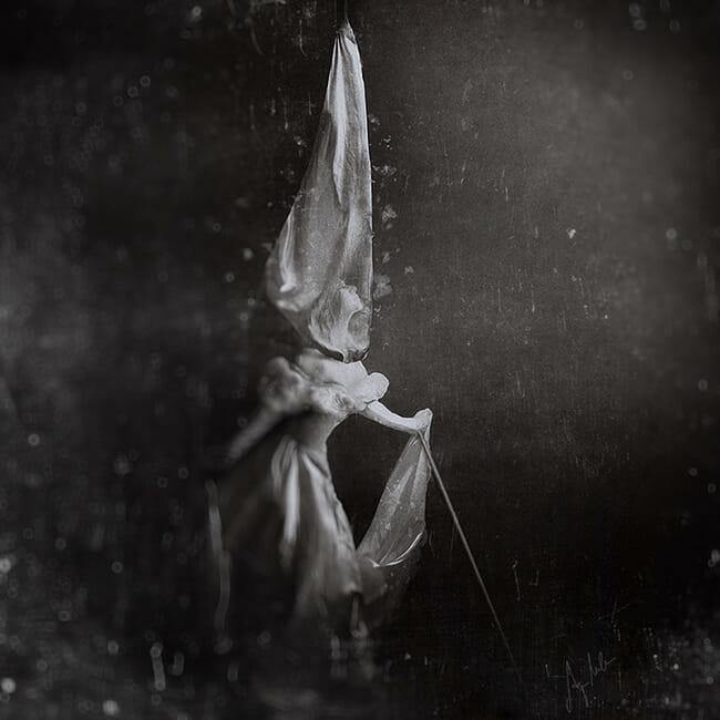 anja-millen_beautiful-bizarre-010