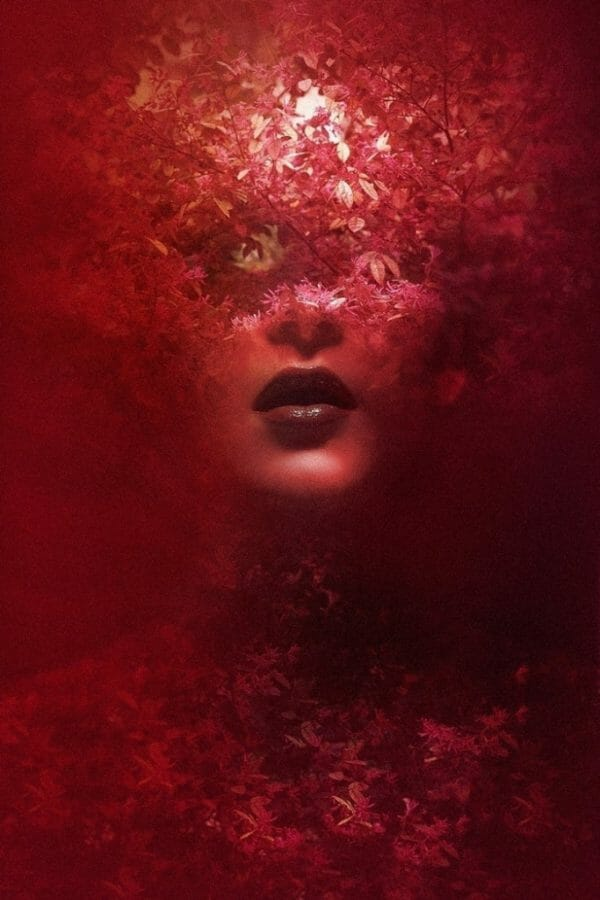 FedericoBebber_GalleryX_BeautifulBizarre01