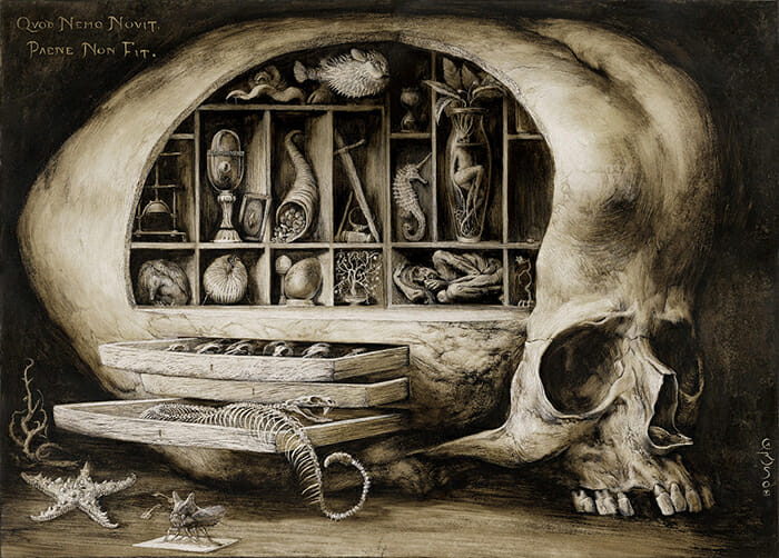 SantiagoCaruso_Wunderkammer_beinart_collective_beautifulbizarre