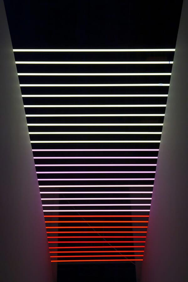 Meryl Pataky Neon Sculptor