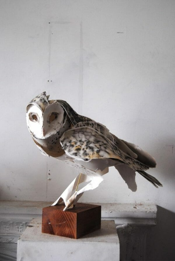 the ethereal animal sculptures of anna wili highfield