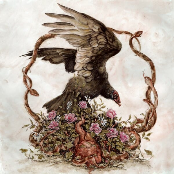 Jeremy Hush, illustration, art