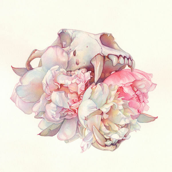 Tracy Lewis Full Bloom surreal watercolor skull painting