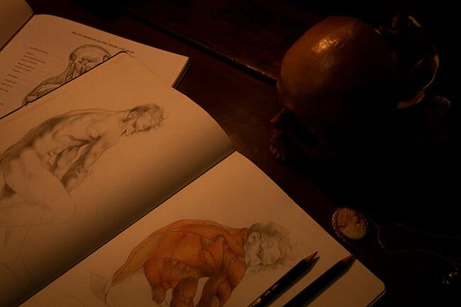 atelier erica calardo figurative art drawing muscles copyright francesco berardinelli