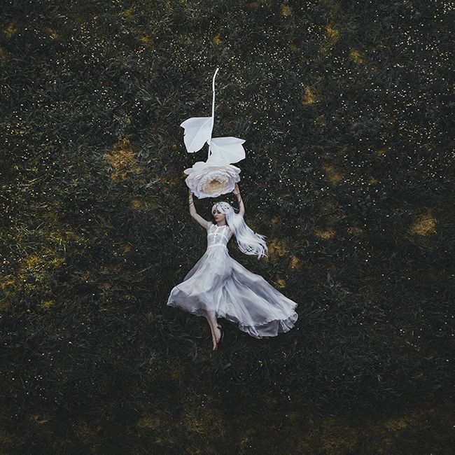 Jovana Rikalo white rose photography