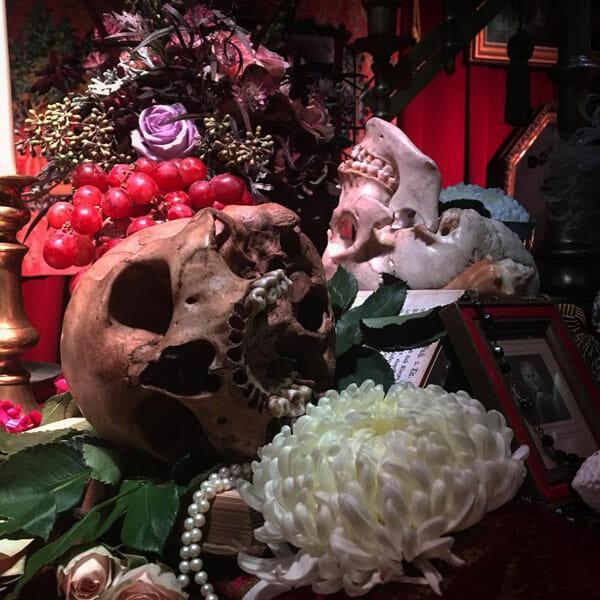 Vanitas surreal skull photography