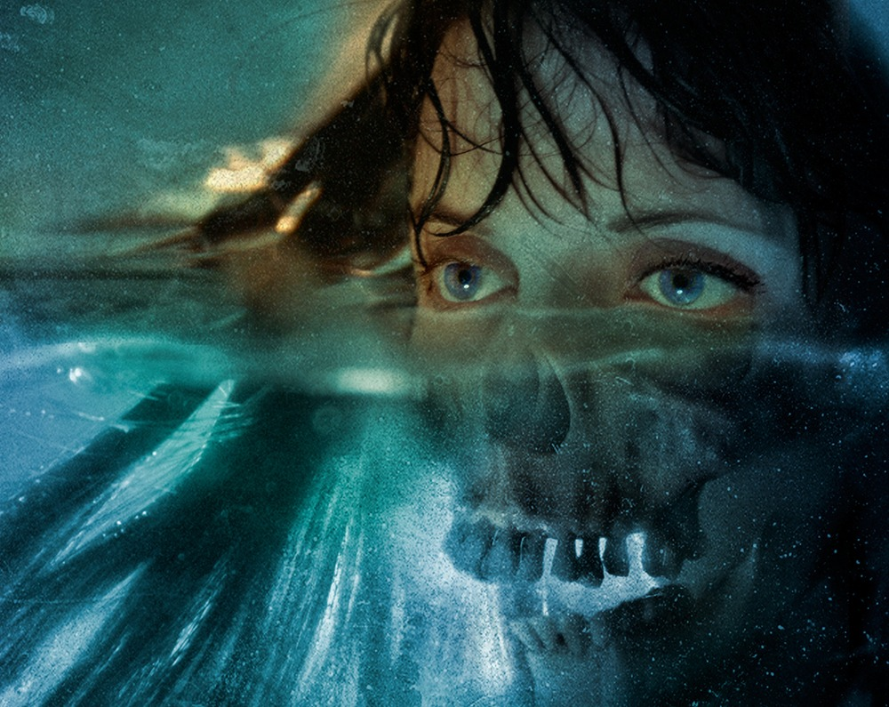 David Seidman Digital Painting skull woman