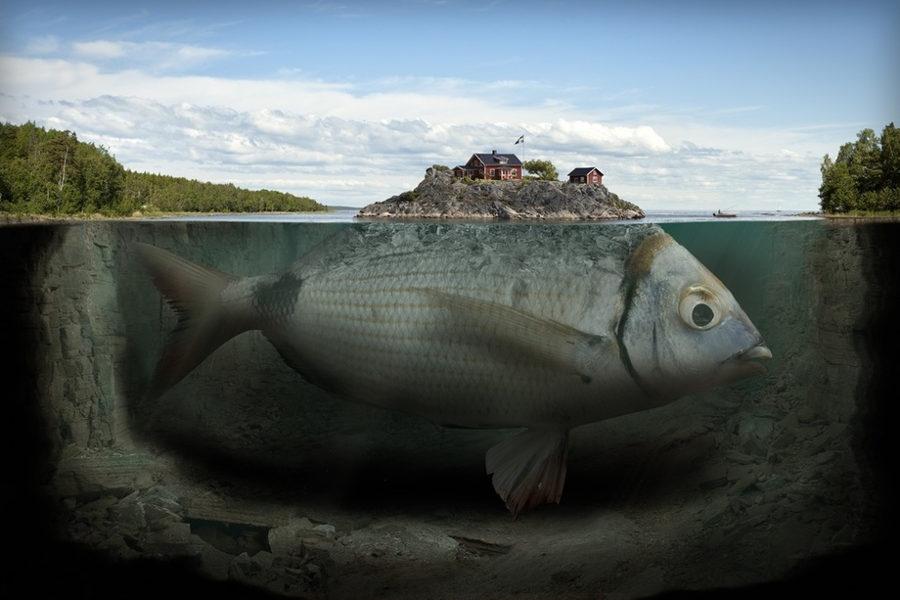 Erik Johansson surreal fish INPRNT