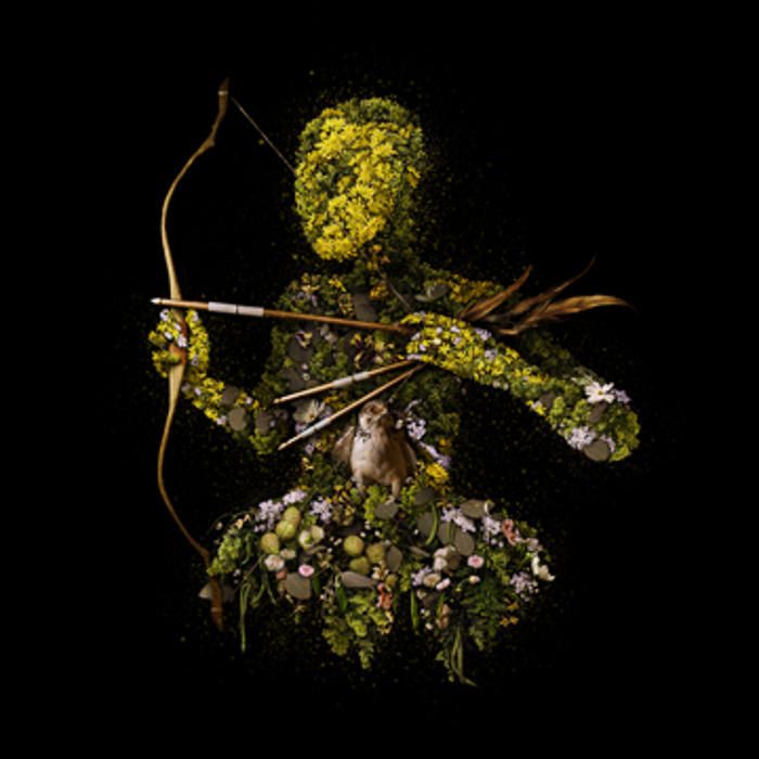 Meggan Joy digital floral art and live floral installation