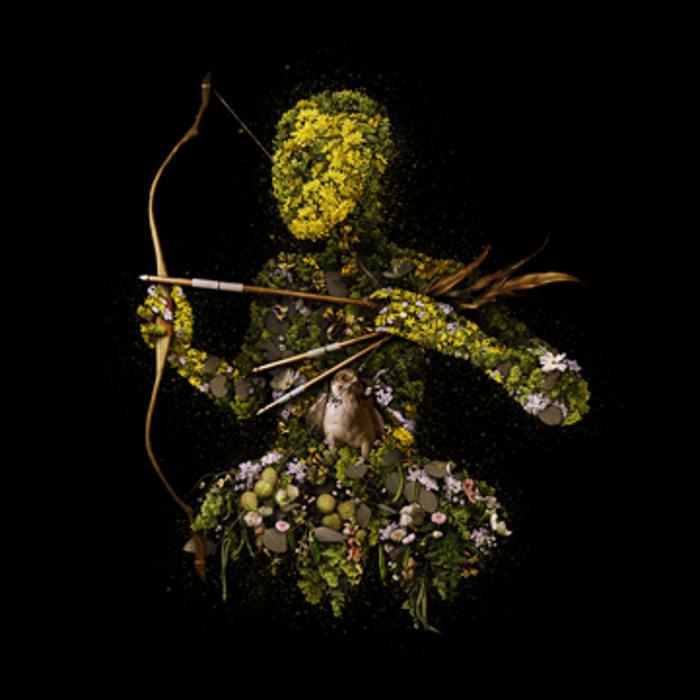 Meggan Joy digital floral art and live floral installation