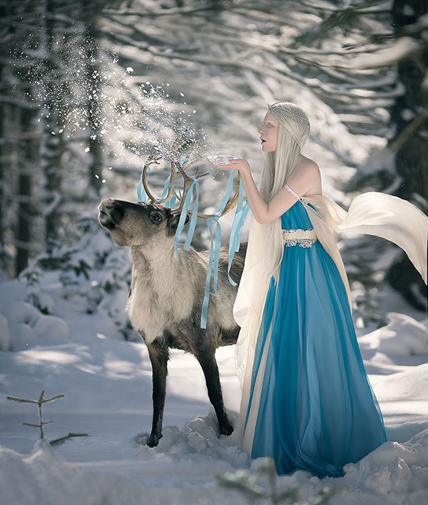 Kseniia-Lygina-reindeer-photography