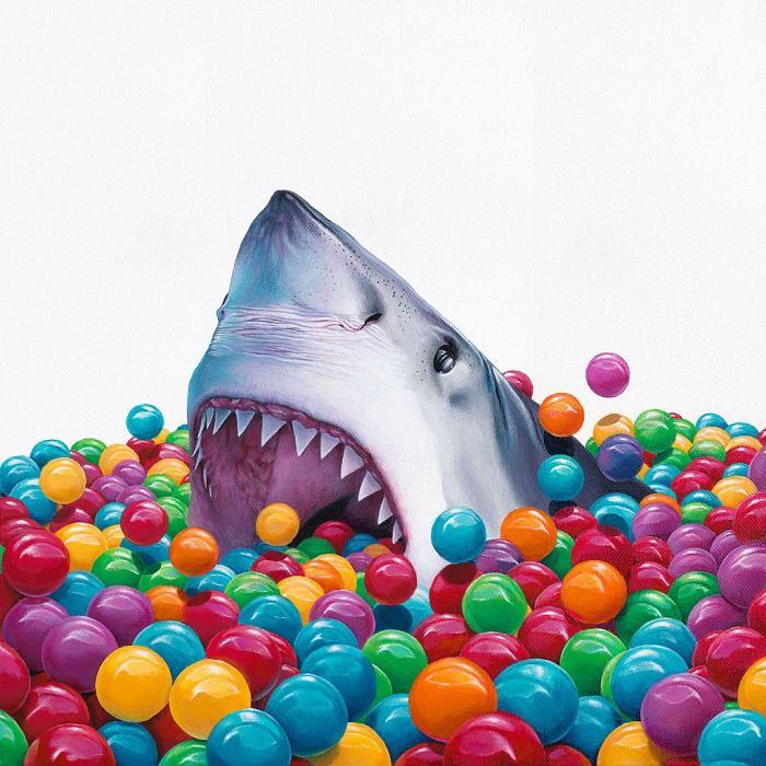 Jacub-Gagnon-shark
