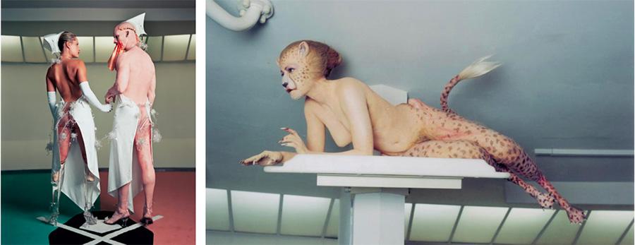 Matthew Barney Cremaster Cycle - The Cremaster Cycle